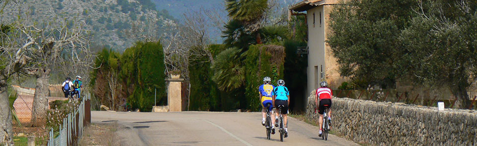 Cycle Mallorca – all you have to do is pedal