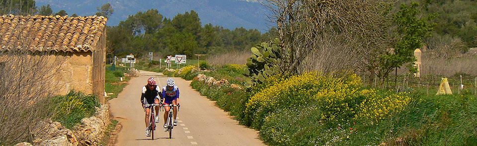 Cylce Mallorca – gentle lanes