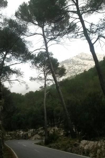 Col de Sa Batalla mist
