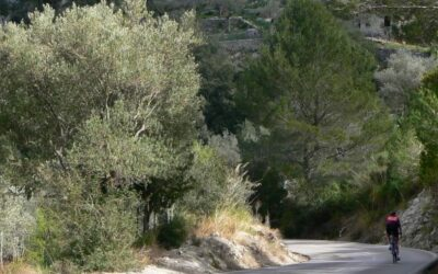 Mallorca quiet-roads cycling route